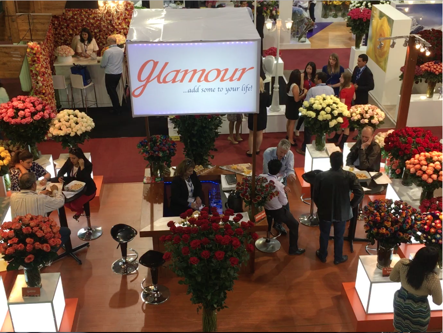 Vente internationale de roses à Quito