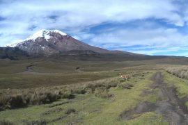 Trek des vigognes au pied du Chimborazo 3