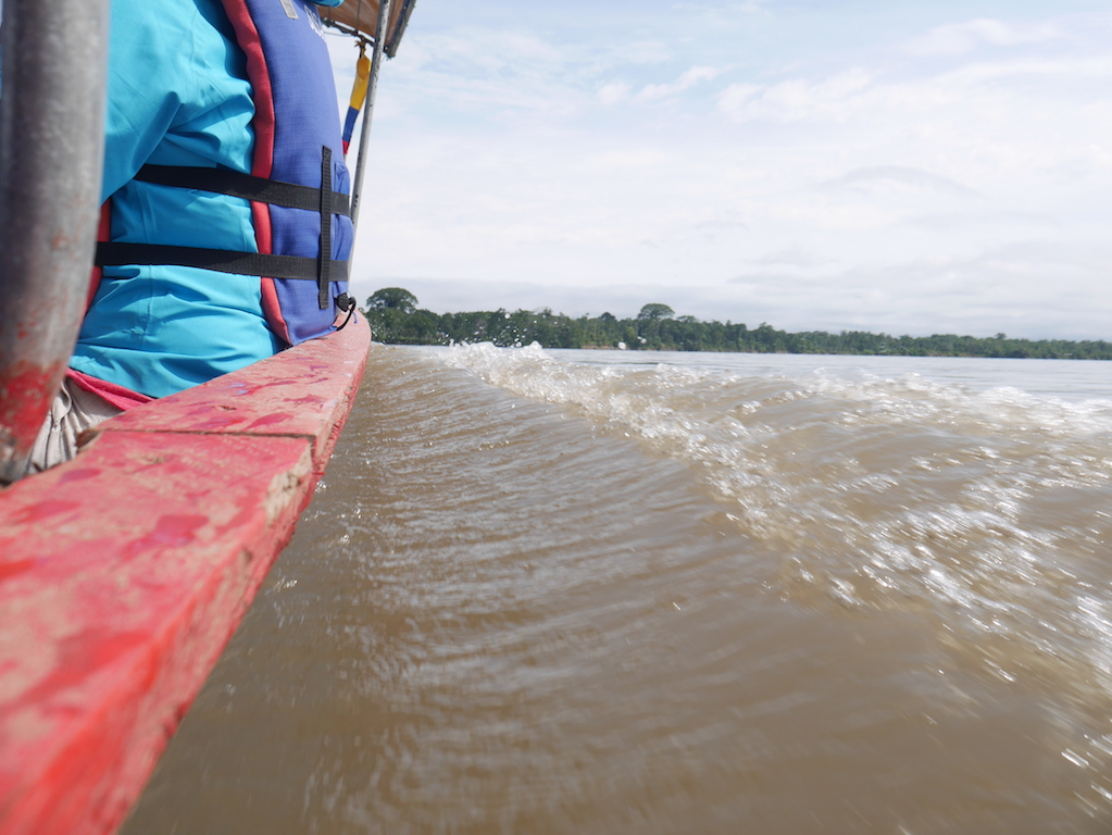 Equateur-amazonie