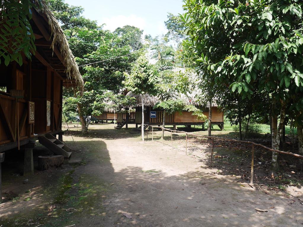 péru-equateur-amazonie