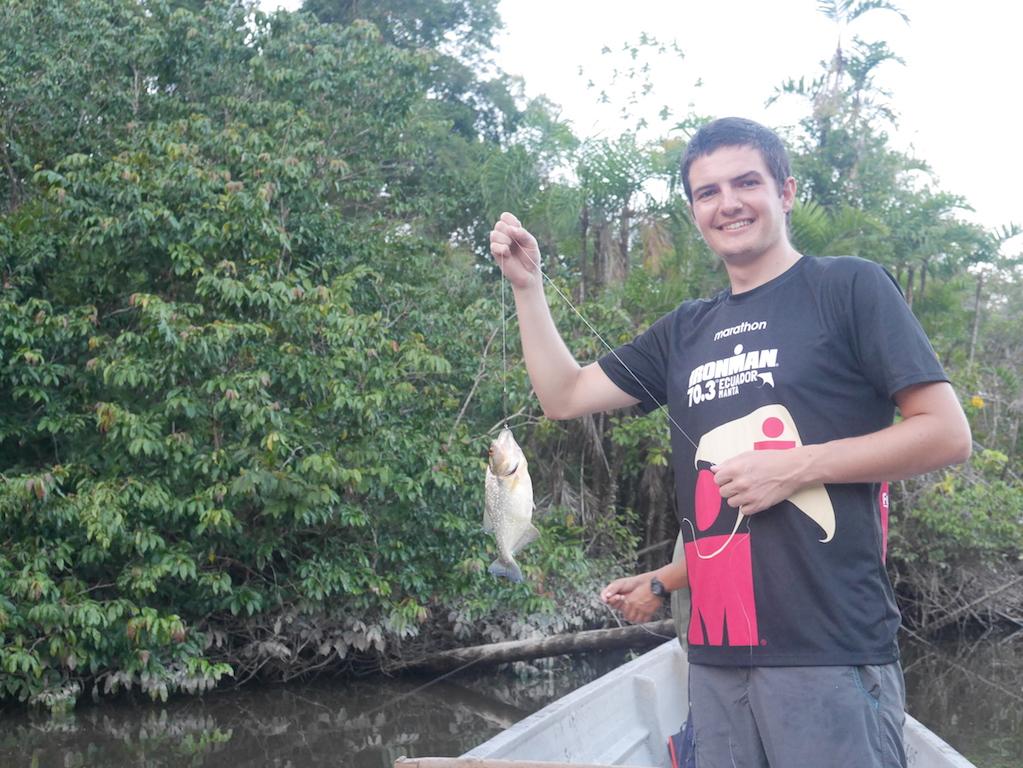 piranha-amazonie