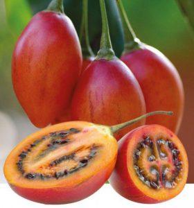 L'intérieur du tamarillo - tomate de arbol