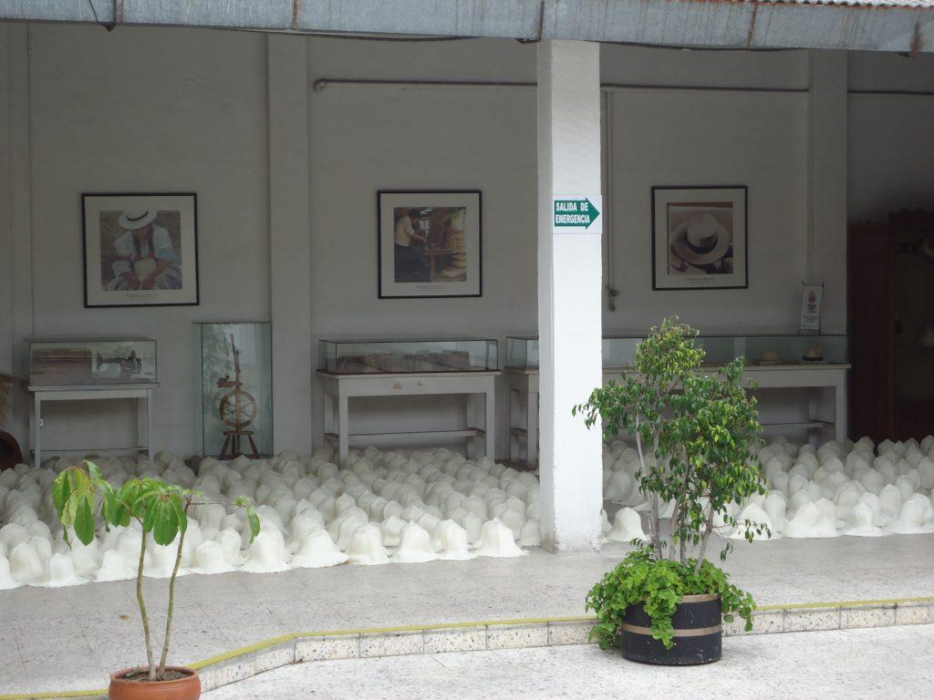 Le Montecristi Panama 4