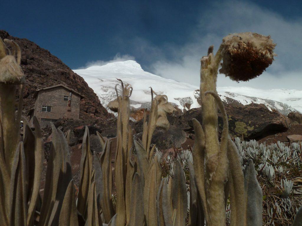 L'activité volcanique en Équateur 3