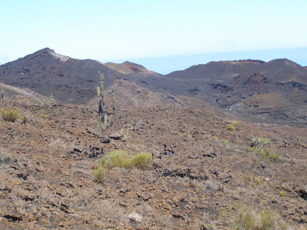 L'activité volcanique en Équateur 15