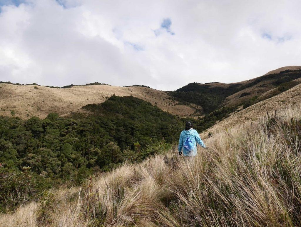 Le magnifique páramo bordant le flanc de montagne