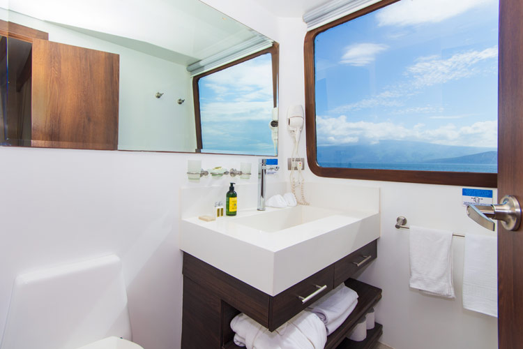 Croisière Cormorant Galapagos, cabine standard twin