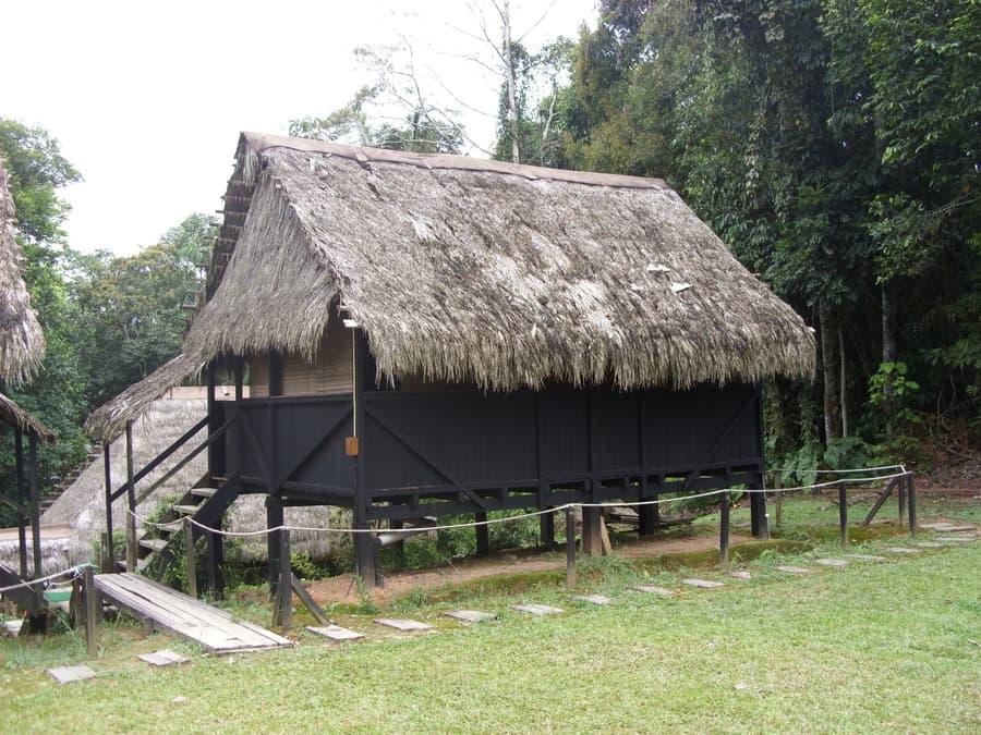 Hôtel Cuyabeno Lodge situé en Amazonie primaire, dans la réserve Cuyabeno, Equateur, vue extérieure des chambres cabanes