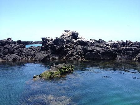 île Isabela, lave des Galapagos