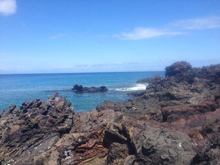 île Santiago, côte des Galapagos
