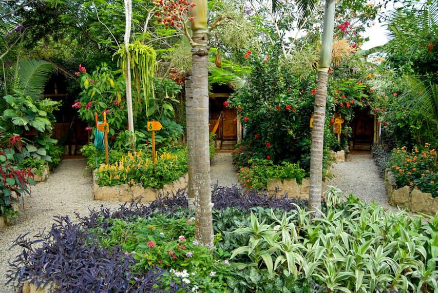 Lodge Mandala, Puerto Lopez, côte Pacifique d'Equateur, jardin