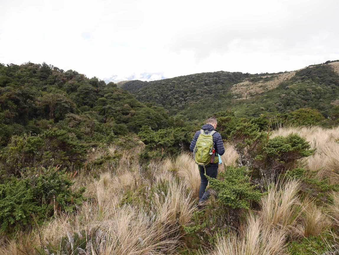 Trekking Leito en Equateur: paramo