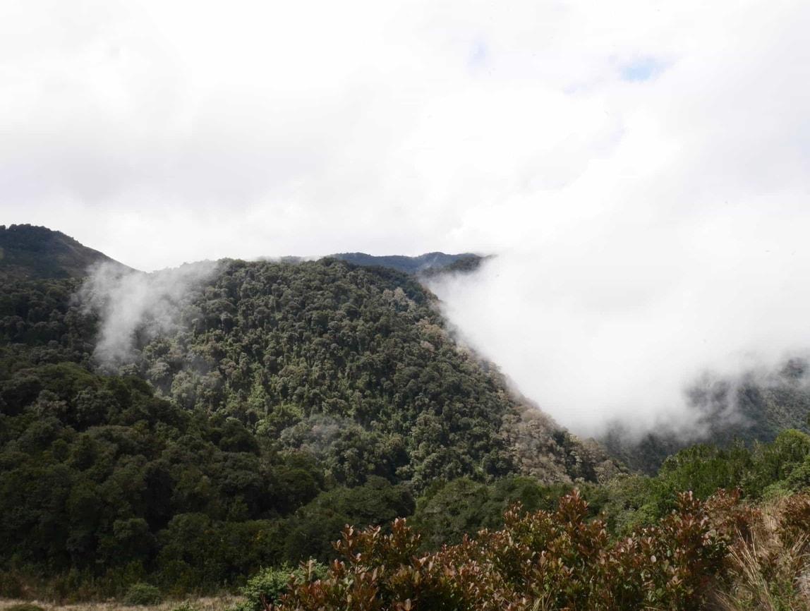 Trekking Leito en Equateur