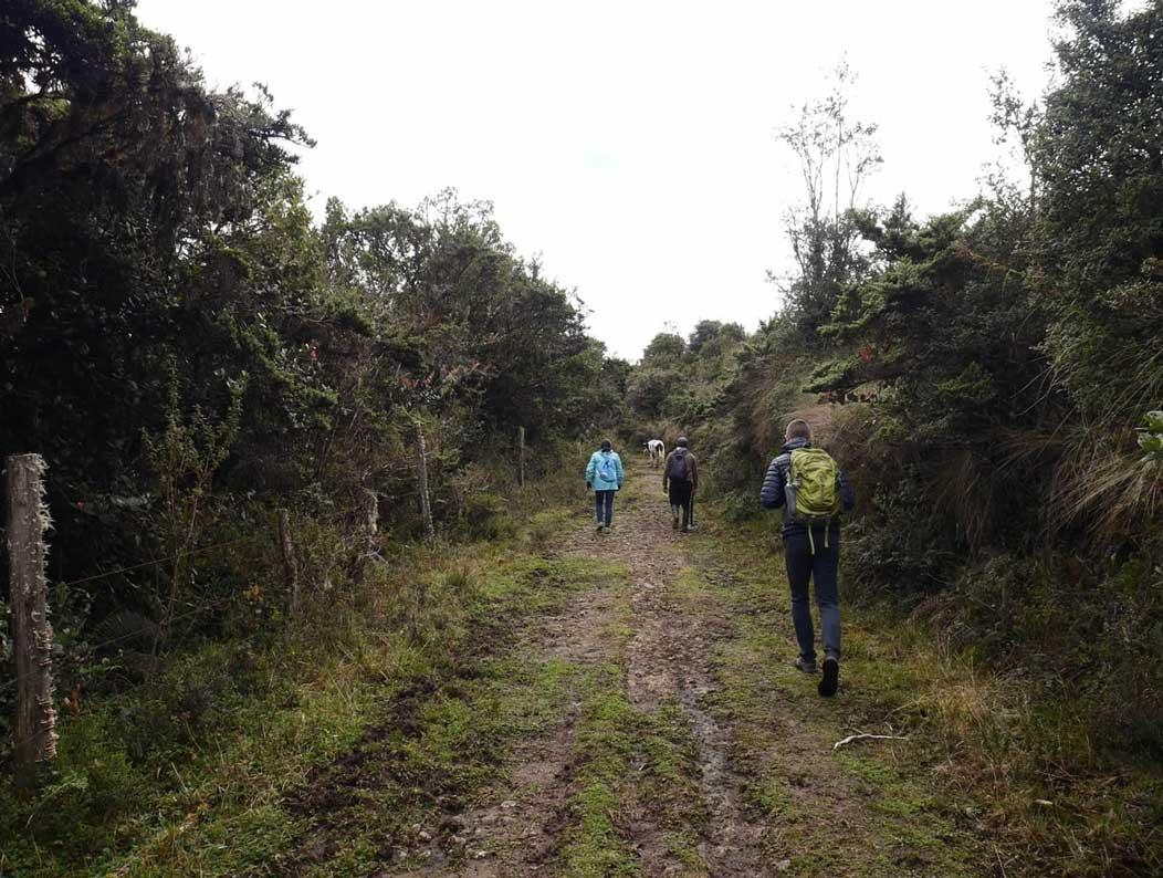 Trek Leito en Equateur: chemin