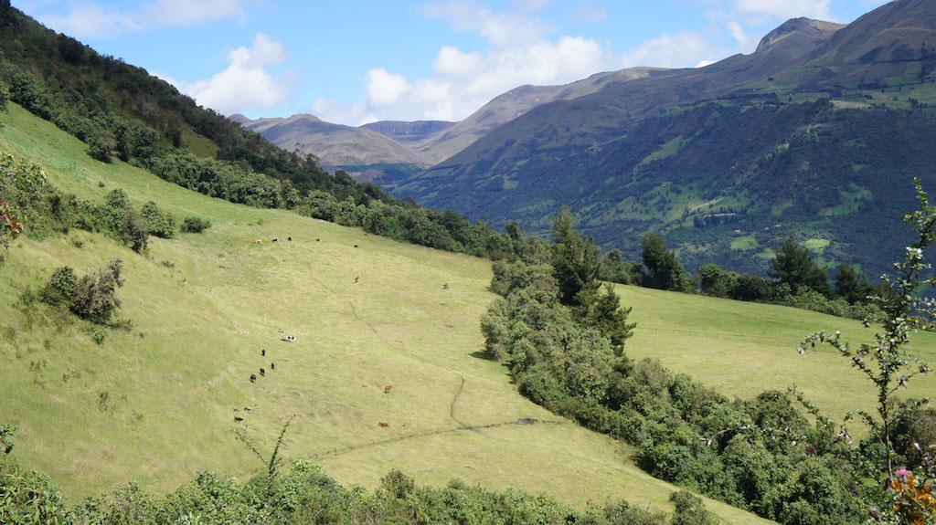 Trekking Altar en Equateur: paysages