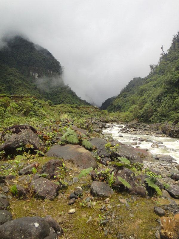 Trekking Lloa-Mindo en Equateur: rivière