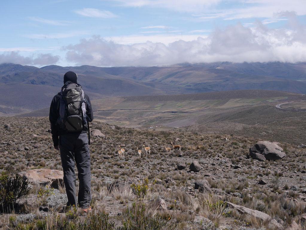 Trek des Vigognes en Equateur: jour 2