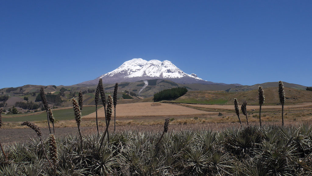 Trekking des Vigognes en Equateur: chimborazo