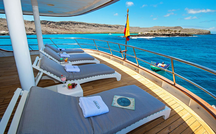 Croisière Galapagos Odyssey, bain de soleil