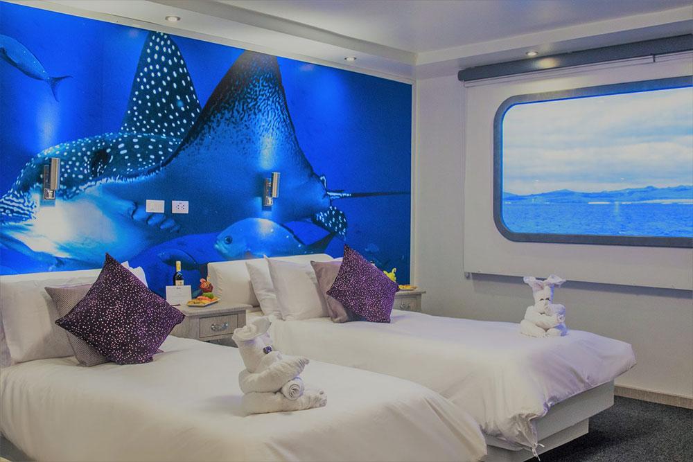 Croisière Camila Galapagos, cabine twin