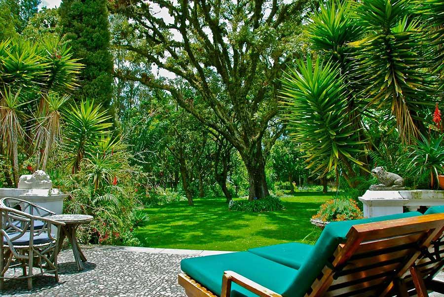 Hacienda Cusin, Otavalo, jardin