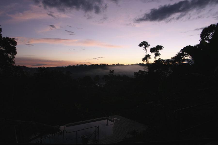 Hamadryade Lodge, Equateur, vue