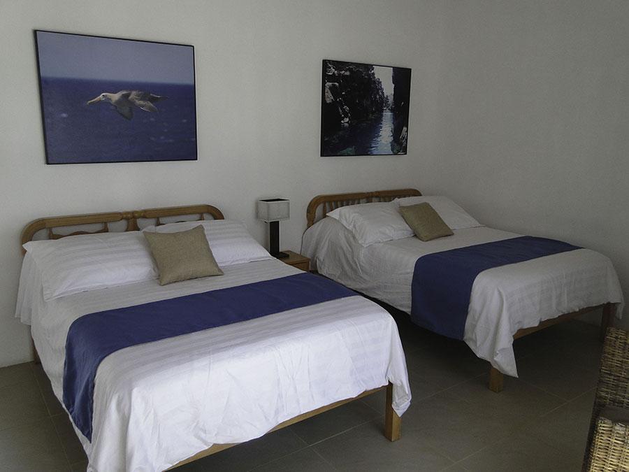 îles Galapagos: hôtel Albemarle, chambre intérieure
