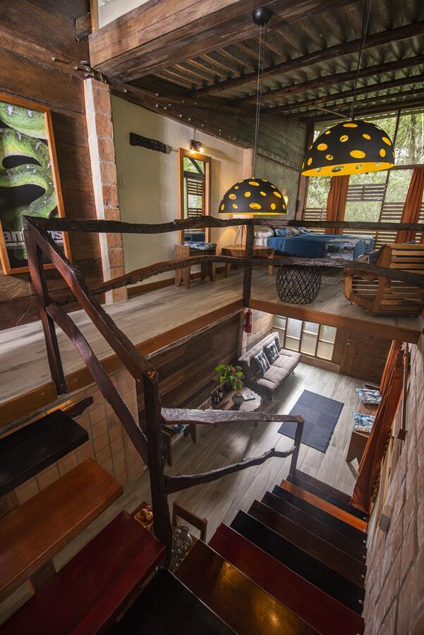 Jamu Lodge, Réserve Cuyabeno, suite