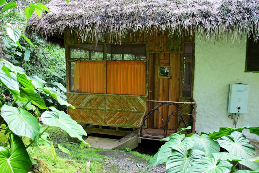 Liana Lodge, Equateur, cabane