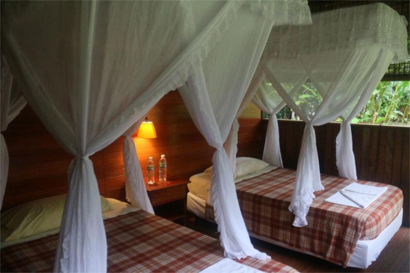 Lodge Cuyabeno, Equateur, cabane standard