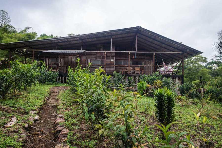 Lodge Hakuna Matata, Equateur, cabanes