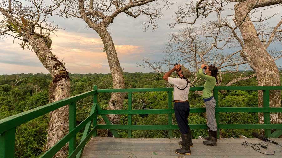 Lodge Napo Wildlife, Yasuni, Equateur, tour