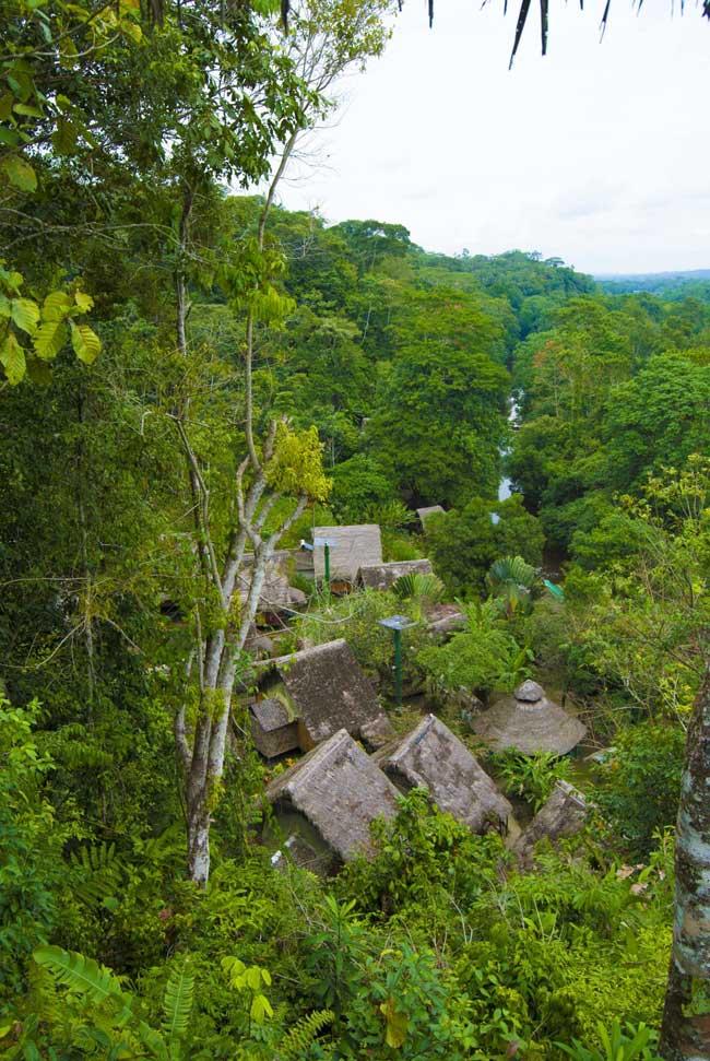 Yacuma Lodge, Amazonie, vue