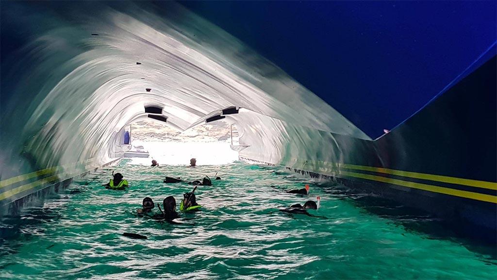 Catamaran Endemic, croisière de luxe aux Galapagos, snorkeling