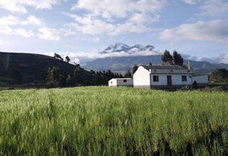 Les Andes d'Equateur